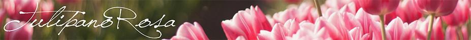 Il blog di TulipanoRosa